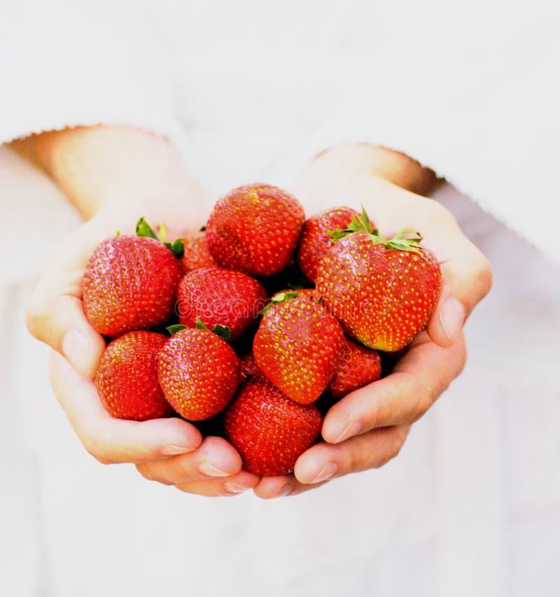 Handvoll Erdbeeren lizenzfreies stockbild