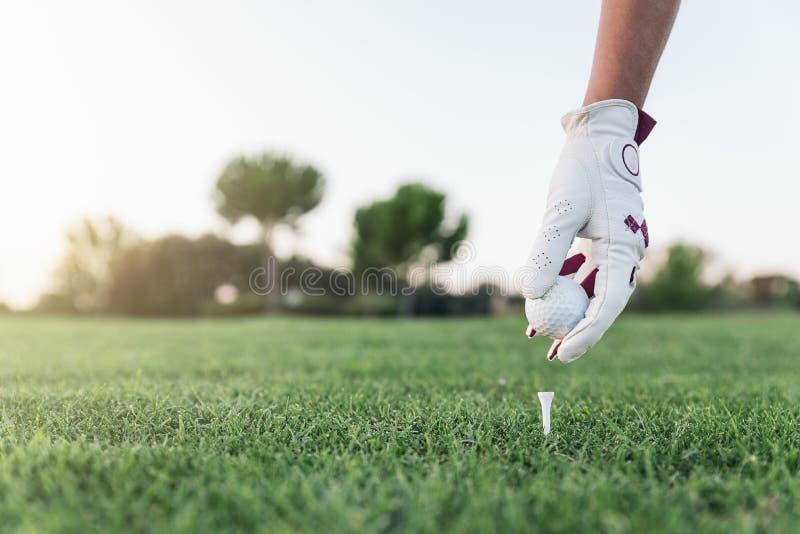 Handvrouw die een golfbal op het T-stuk zetten stock fotografie