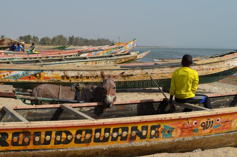 Handwerkliche hölzerne Fischerboote Pirogues, zierliches CÃ'te, Senegal lizenzfreie stockfotografie