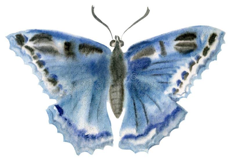 Handwork akwareli ilustracja insekta motyl ilustracja wektor