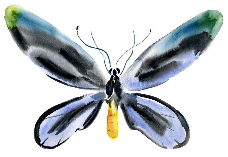 Handwork akwareli ilustracja insekta motyl royalty ilustracja