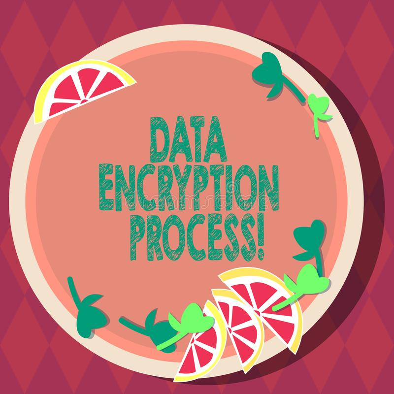 Handwriting text Data Encryption Process. Concept meaning The method of translating data into another form Cutouts of Sliced Lime. Wedge and Herb Leaves on vector illustration