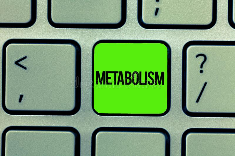 Handwriting text writing Metabolism. Concept meaning Chemical processes in body to produce energy food processing.  stock photo