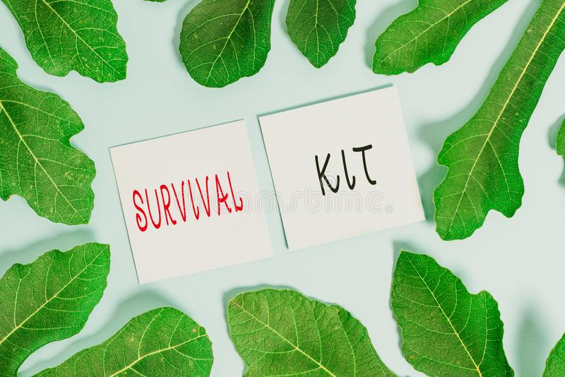 Handwriting text writing Survival Kit. Concept meaning Emergency Equipment Collection of items to help someone. Handwriting text writing Survival Kit stock image