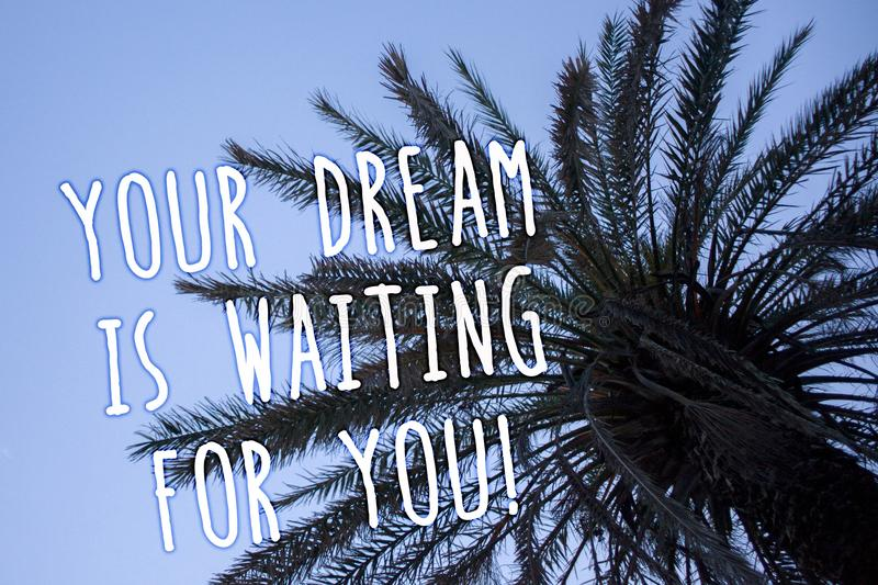 Handwriting text Your Dream Is Waiting For You. Concept meaning Goal Objective Intention Target Yearning Plan Tall palm tree blue royalty free illustration