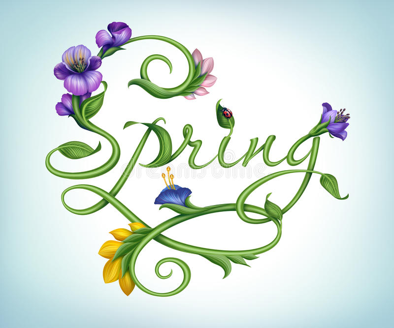 Natural green calligraphic word spring with flowers royalty free illustration