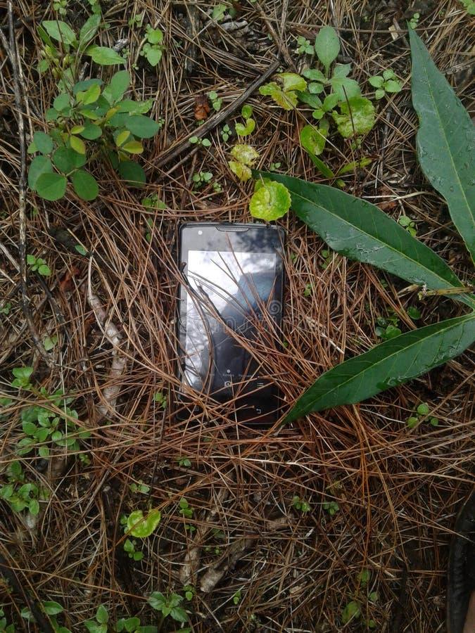 Handy in den Leaves , Natur sieht aus und keine Bearbeitung stockbilder
