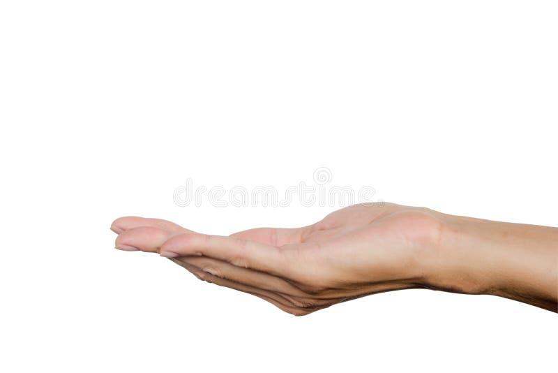 Handzeichen erschließen wie das Halten etwas auf der Palme, die auf weißem Hintergrund lokalisiert wird Über Weiß stockbild