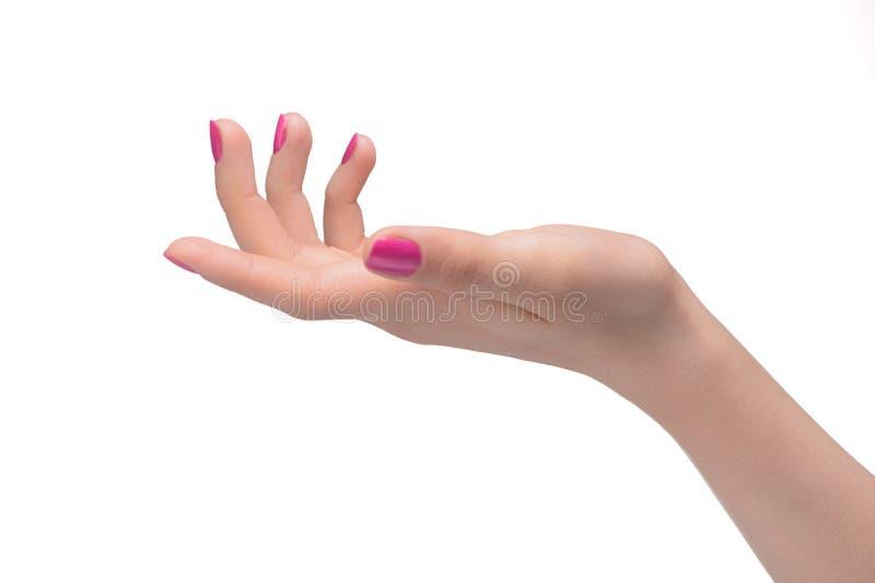Handzeichen. Nahaufnahme der weiblichen Hand gestikulierend während lokalisiertes O lizenzfreie stockfotos