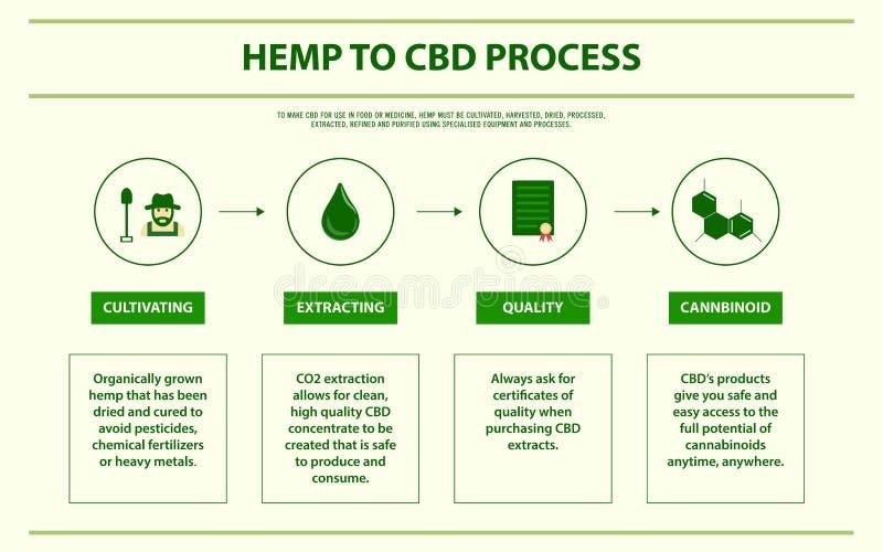 Hanf zu CBD-Prozess horizontalem infographic lizenzfreie abbildung