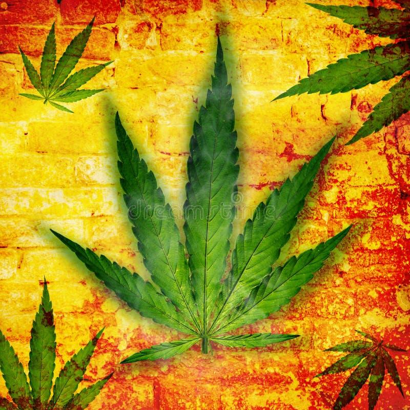 Hanfblatt, Marihuanaanlage lizenzfreie abbildung
