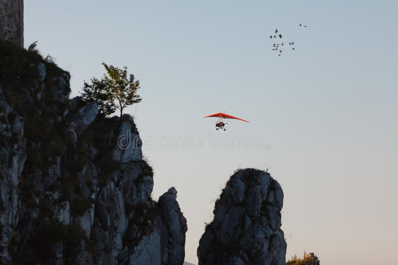 Hang-glider a flock of birds royalty free stock photography