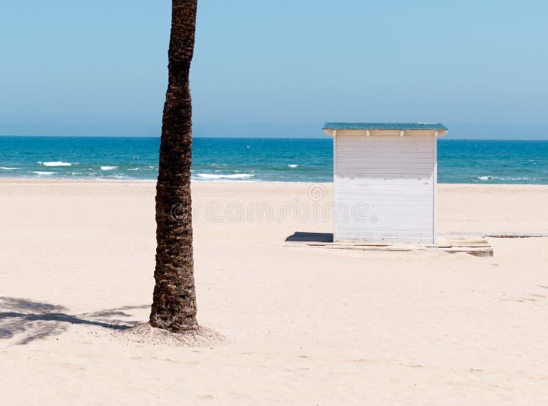 Hangar et palmier sur la plage photos stock