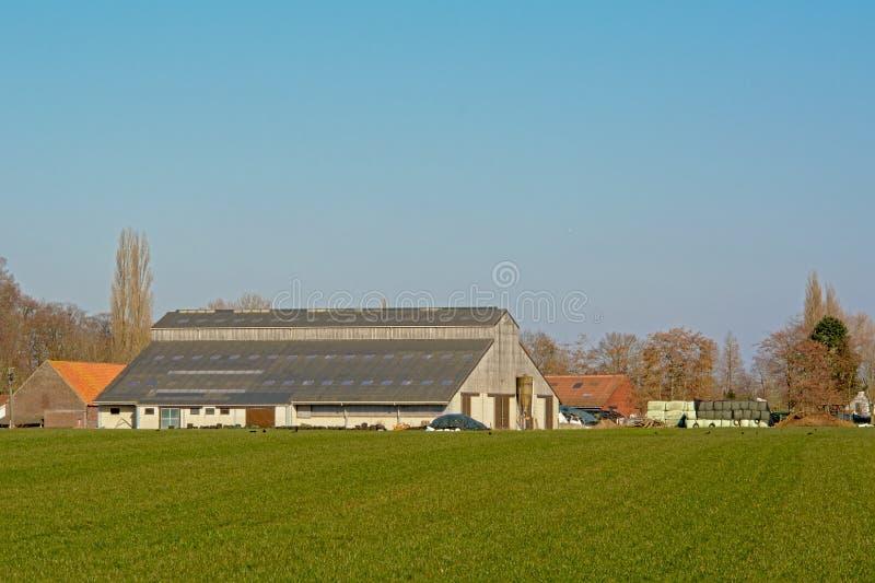 Hangar nowożytny gospodarstwo rolne w flemish wsi zdjęcie stock