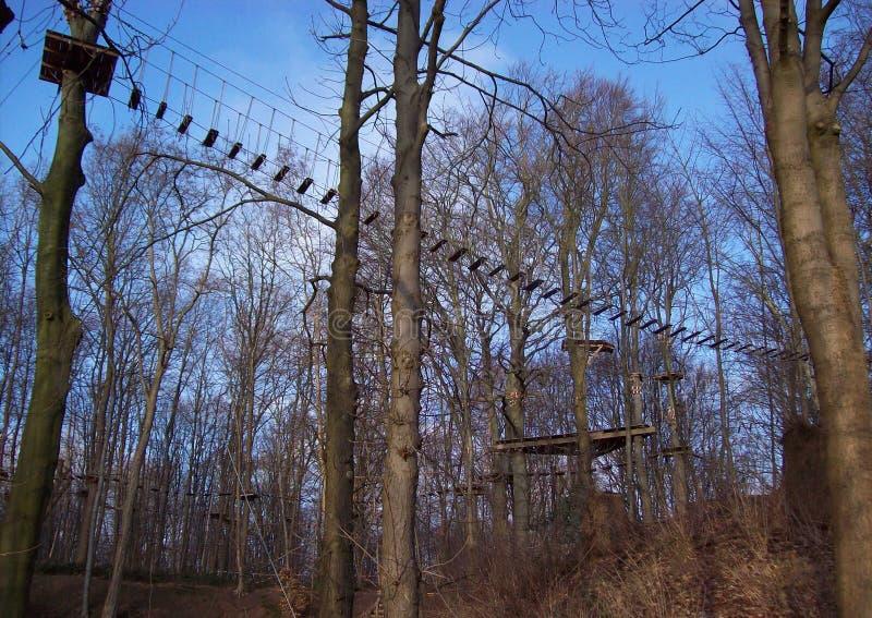 Hangbrug in het park royalty-vrije stock foto's