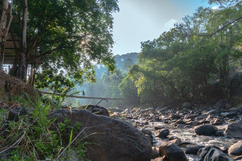 Hangbrug over de waterval stock fotografie
