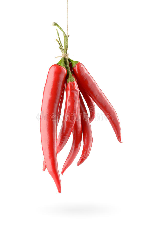 Download Hanged Chili Peppers stock image. Image of mexican, chilli - 41874235