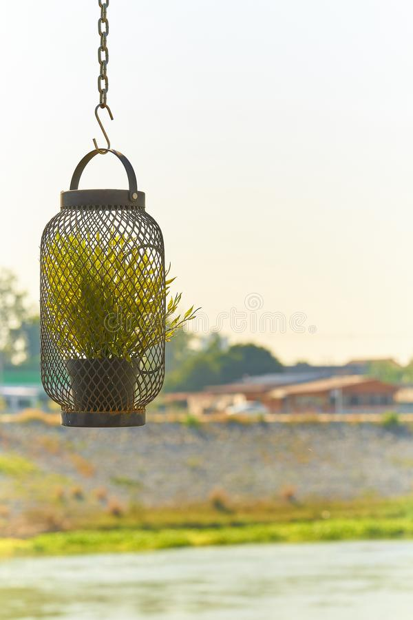 Hangende bloempot met groene installatie door het venster, groene installatie in metaallamp, op de achtergrond van de Aardrivier stock afbeelding