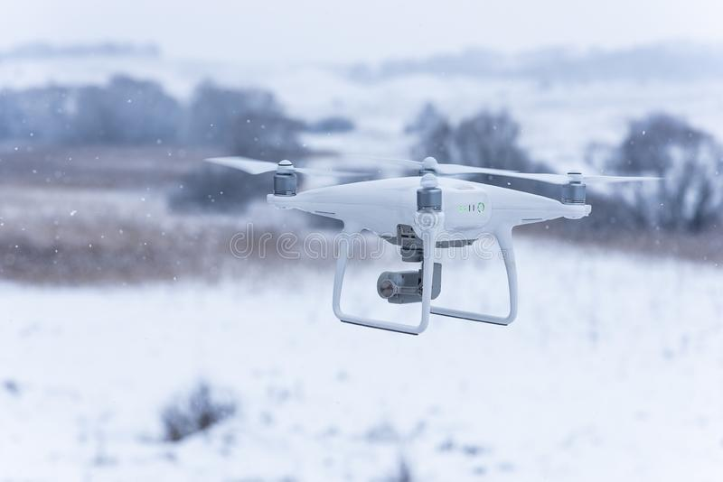 Hangende hommel die beelden van wilde aard nemen Koud de winterweer Bewolkte dag met dalende sneeuw royalty-vrije stock afbeelding