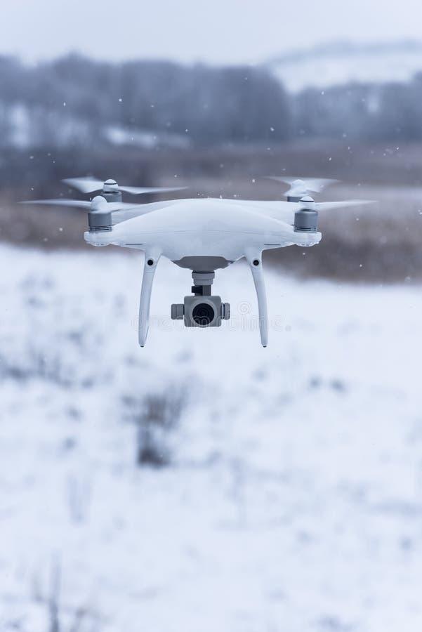 Hangende hommel die beelden van wilde aard nemen Koud de winterweer Bewolkte dag met dalende sneeuw royalty-vrije stock foto