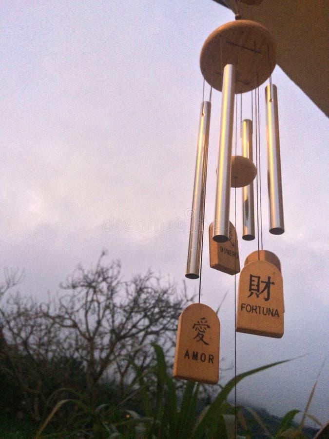 Hangende windrammelaar, die in de lucht dromen stock afbeelding