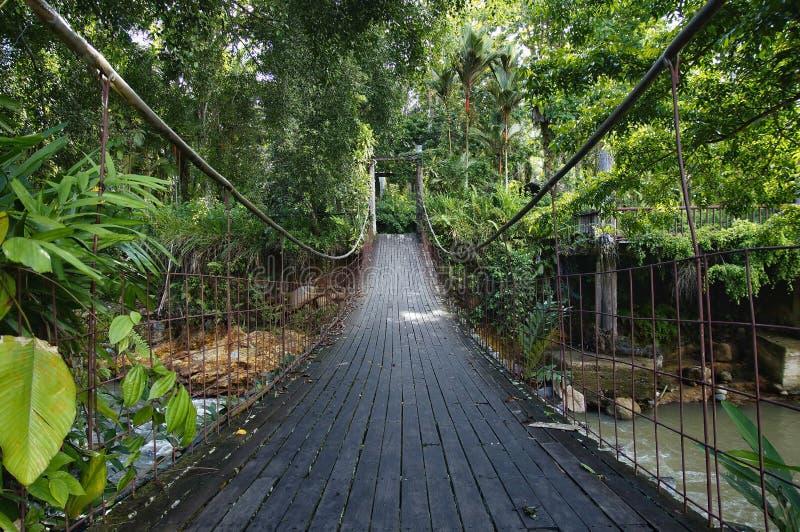 Hangging-Brücke am Flussufer lizenzfreie stockfotografie