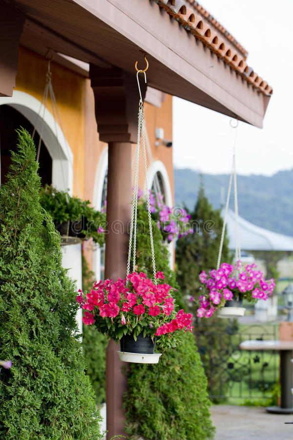 Hanging baskets of flowers at the front porch. stock photography