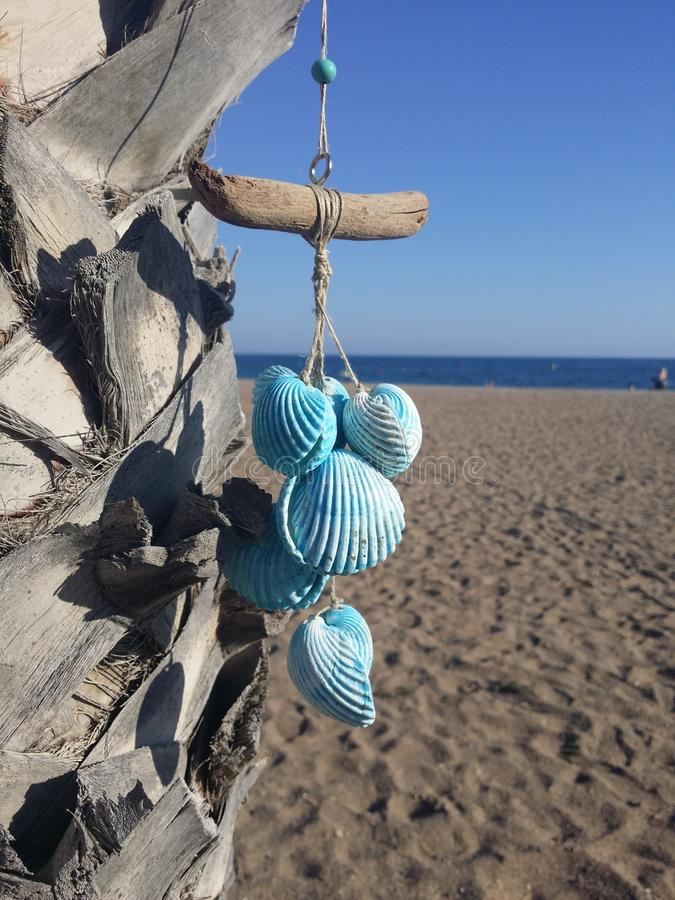 Hanging blue seashells on the palm tree royalty free stock photo