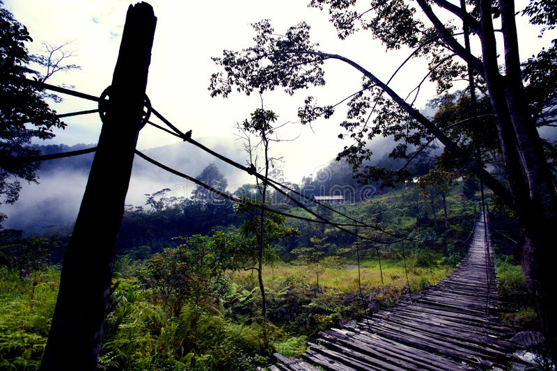 Download Hanging Bridge Fear stock photo. Image of blue, indonesia - 7813282