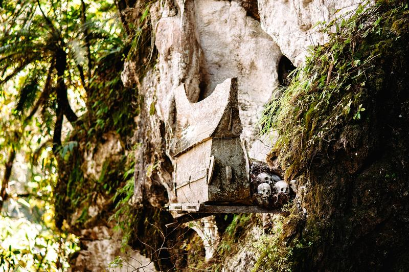 Hanging coffins, graves. Old coffin with skulls and bones nearby on a rock. Burials site, cemetery Kete Kesu, Sulawesi, Indonesia. Hanging coffins, graves. Old stock photo