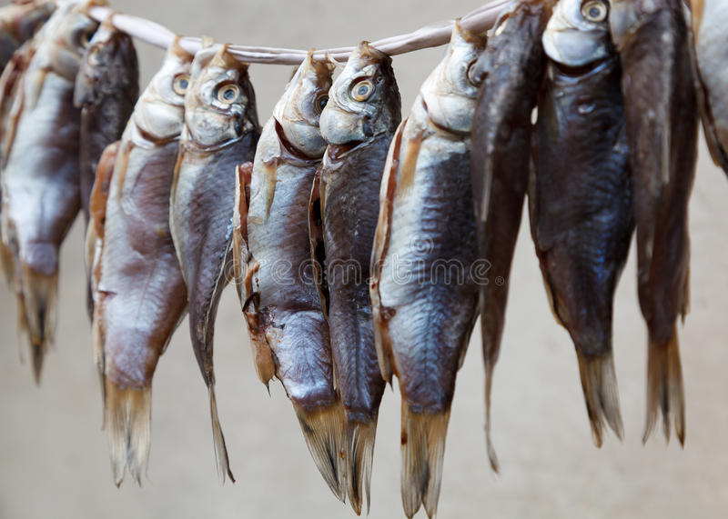 Hanging dried fish for sale stock photo image 30790018 for Stock fish for sale