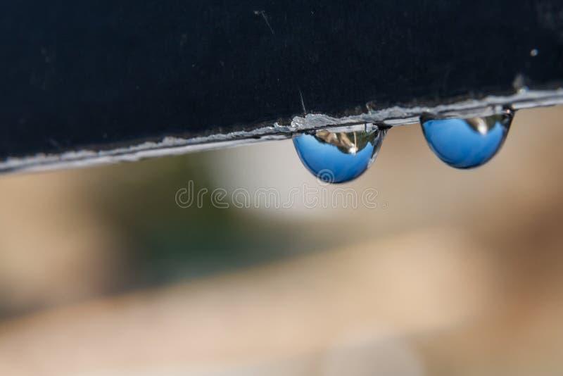 Hanging Drops stock photo
