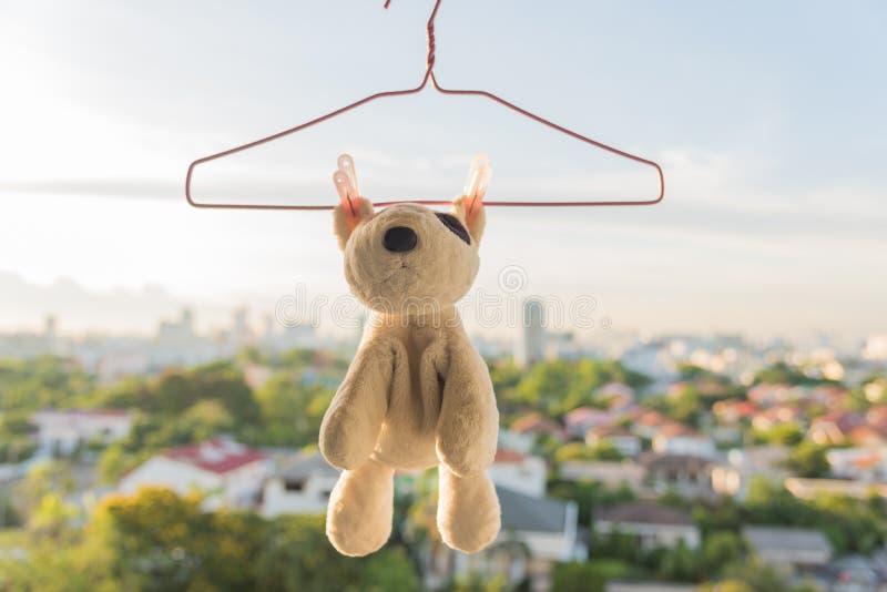 Hanging animal dolls royalty free stock images