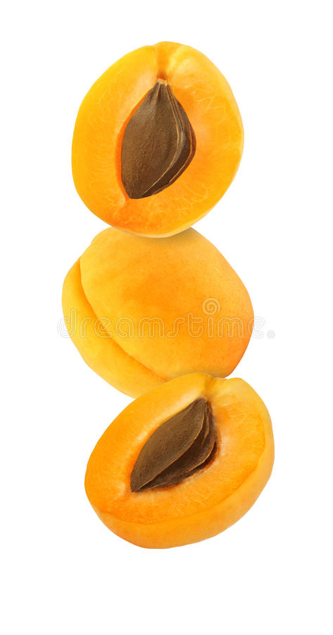 Hanging, falling, hovering and flying whole and sliced apricot. Isolated on white background with clipping path royalty free stock images