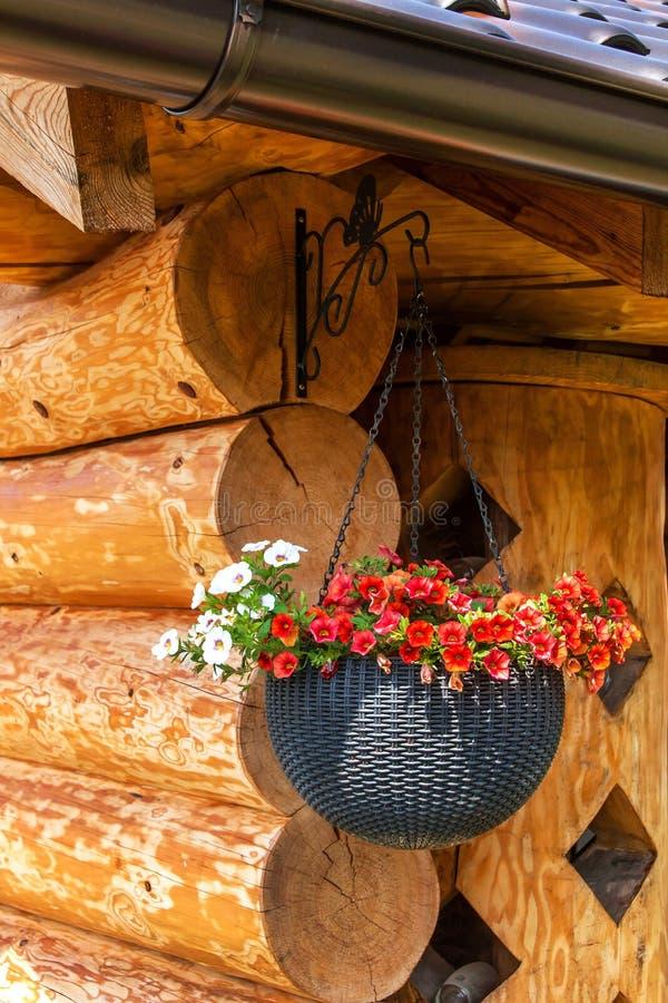 Hanging flower pot on wooden log cabin. Decorative flower pot on the cottage stock image
