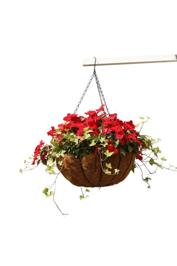 Free Hanging Flowers Stock Photo - 85682920