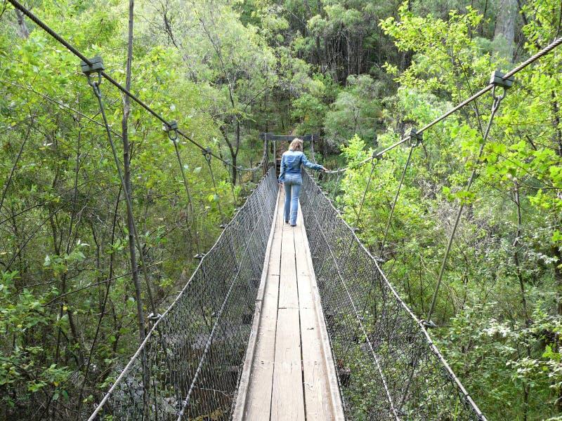 Hanging footbridge. stock photography