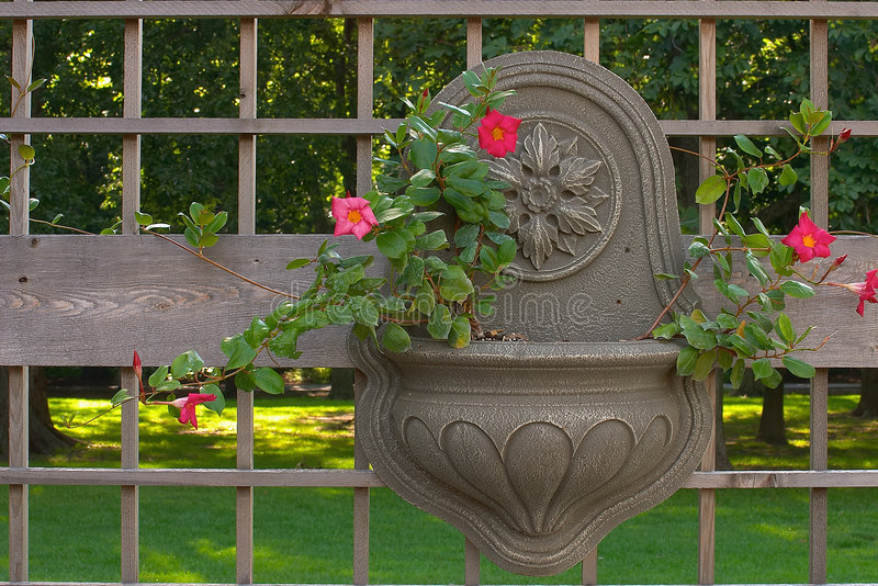 Download Hanging Garden Container stock image. Image of hanging, design - 16551