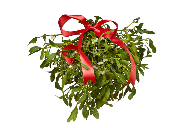 Hanging green mistletoe with a red bow stock photography