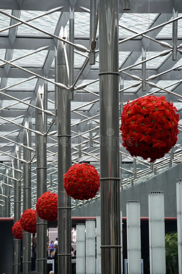 Hanging Poinsettia Balls stock photo