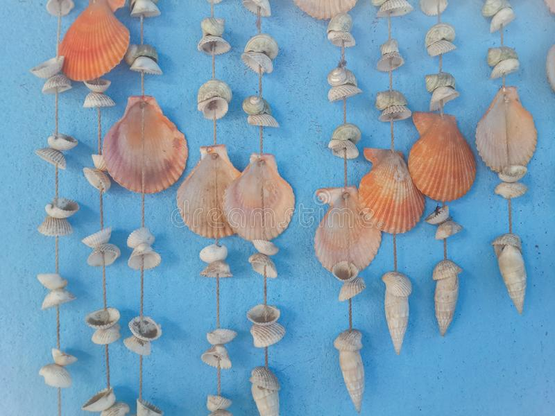 Hanging seashells chime. Together with every gentle breeze royalty free stock photos