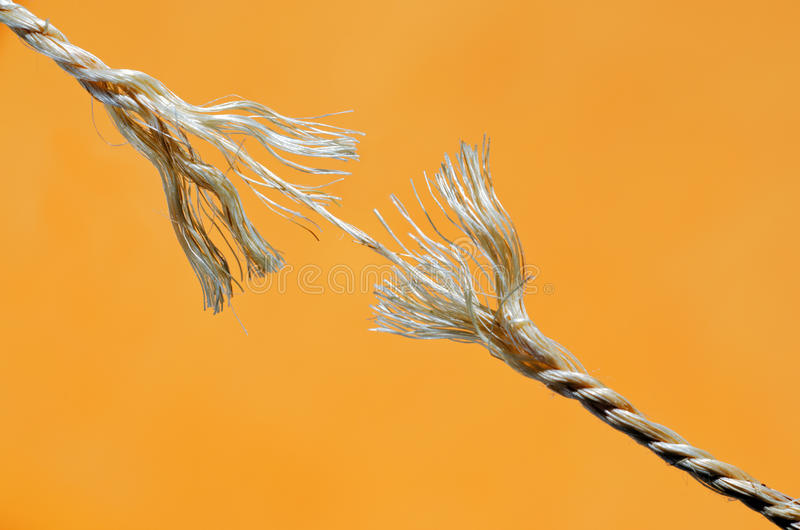Download Hanging by a Thread stock photo. Image of last, growth - 32446886