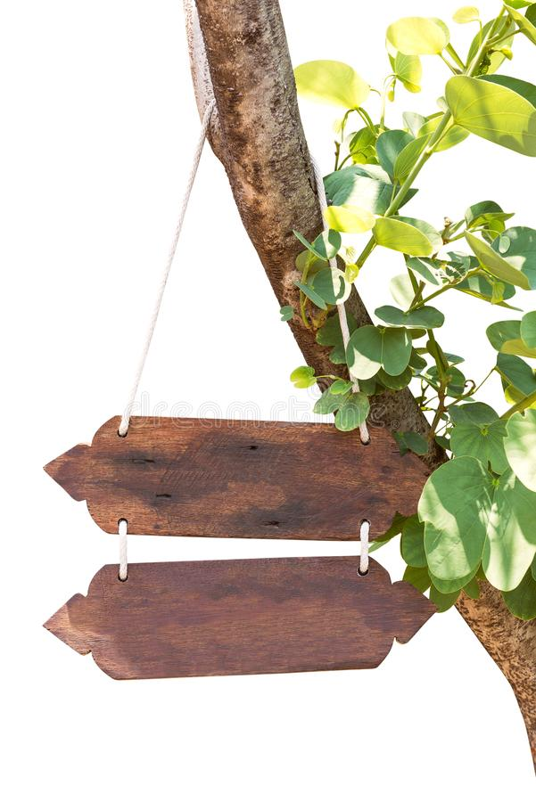 Hanging wooden signboard isolated. Hanging wooden signboard hold on tree trunk isolated on white background with clipping path royalty free stock photo