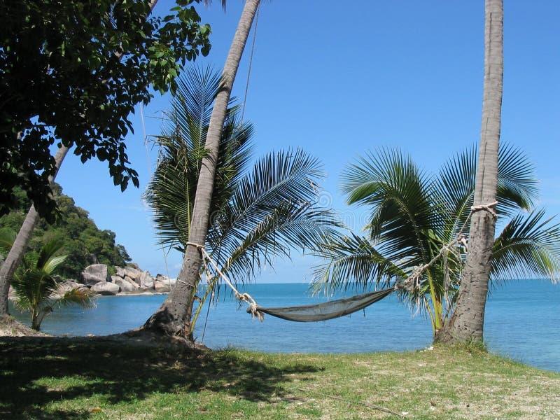 Hangmat op strand royalty-vrije stock fotografie