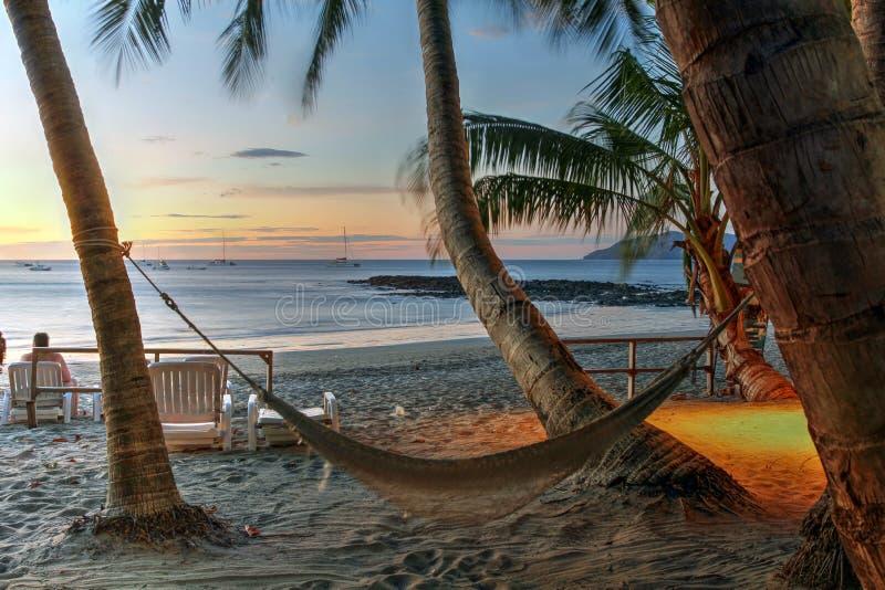 Hangmat op tropisch strand bij zonsondergang stock afbeeldingen