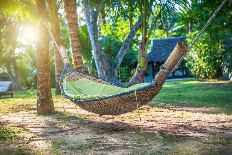 Hangmat tussen twee palmen bij tropische exotische strandachtergrond stock foto