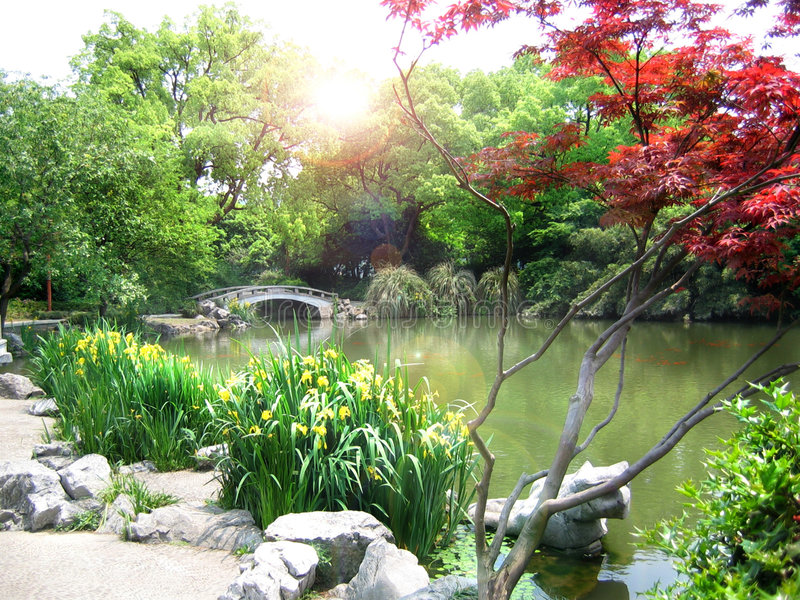 hangzhou natury parka sceneria obraz royalty free