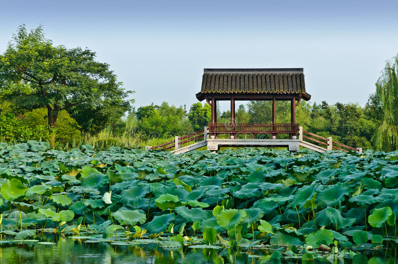 Hangzhou the pavilion in the park royalty free stock images