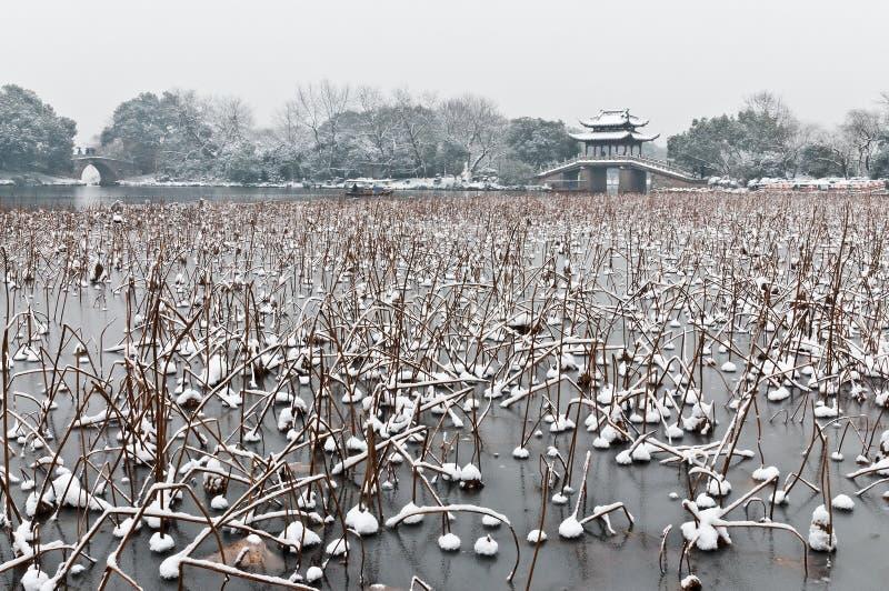 Hangzhou zimy sceneria obrazy stock