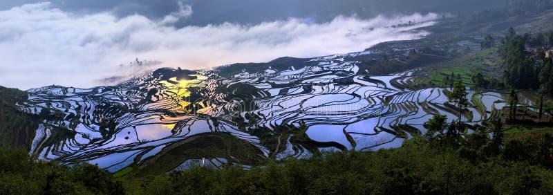 hani porcelanowy taras Yunnan fotografia stock